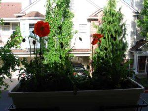 Balkonláda